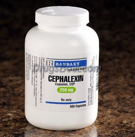 buy cephalexin for dogs